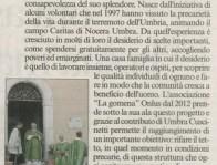 Corrumbria